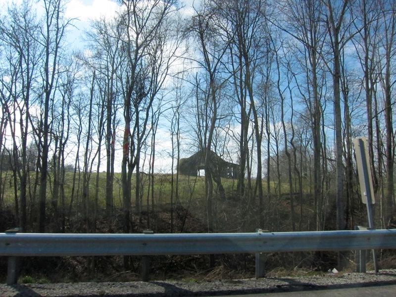 barn through trees