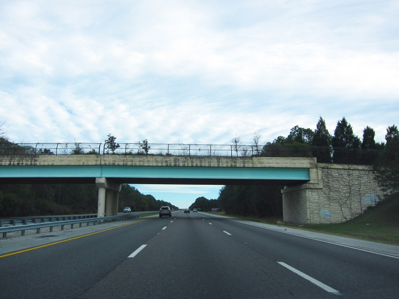 hints of blue overgrown bridge