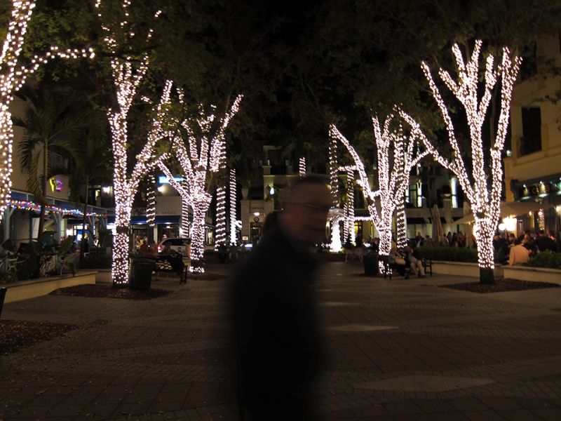 charlie tree lights