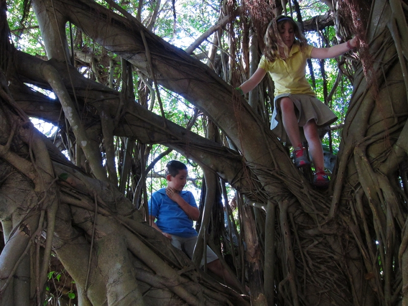 max and shayna in the tree