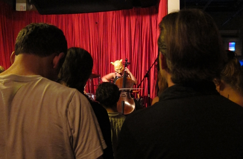pig plays cello