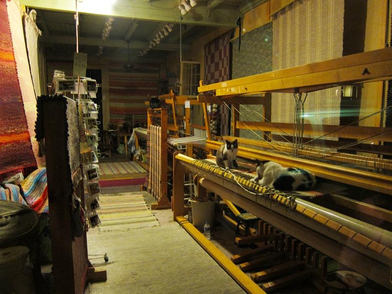 cat weavers