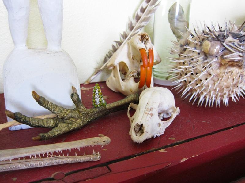 skulls etc 2