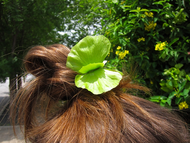 butterfly leaf in her hair