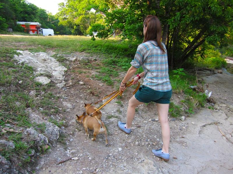 walking the weasels
