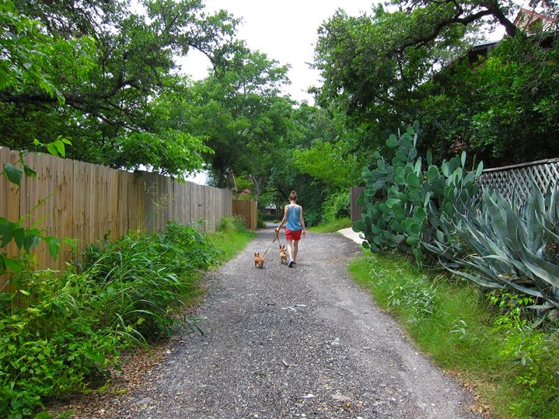 walking the weasels3