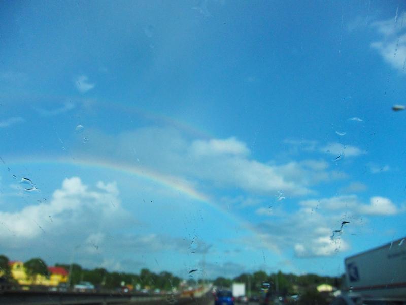 double rainbow truck